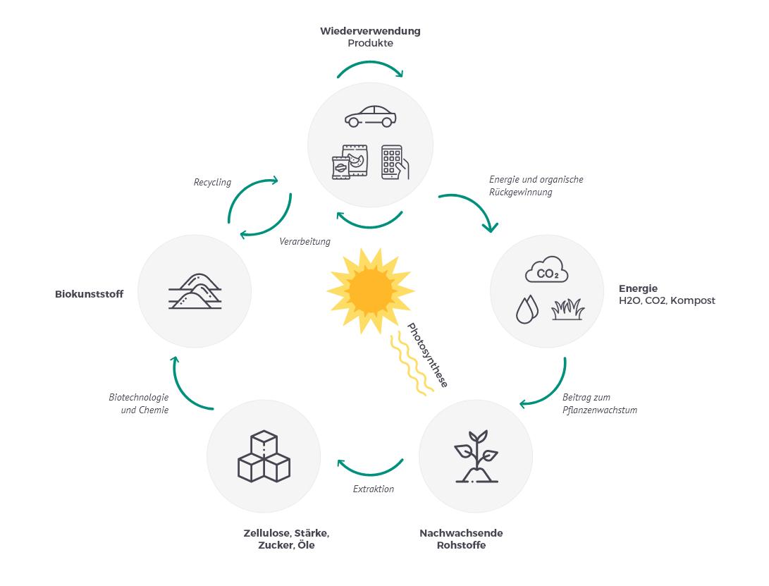 Wertschöpfungsprozess biobasierte Kunststoffe